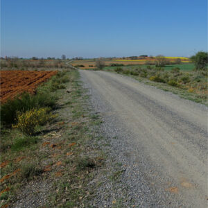 Auf dem Jakobsweg nach Santiago de Compostela - inklusive Wanderungen