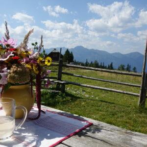 Gemütlichkeit und Alpenzauber im Lungau