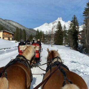 Pferdeschlittenfahrt Oberhofalm